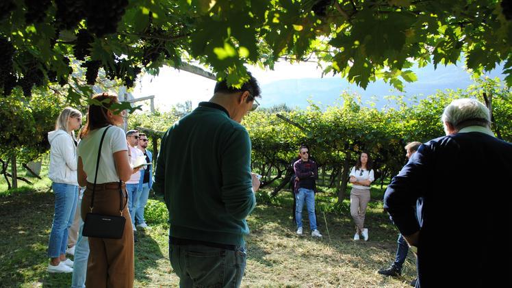 Albino Armani con i blogger del vino L Arena di Verona